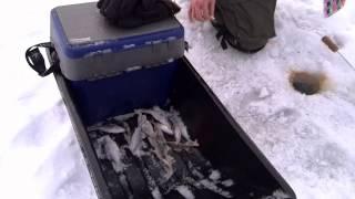 Зимняя рыбалка  Видеоотчет о рыбалке от 28 12 14.