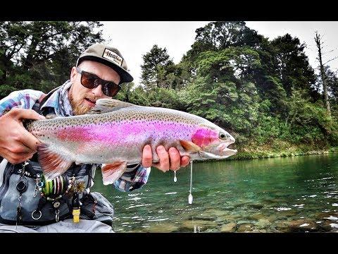 Epic Winter Fishing On The Tongariro River