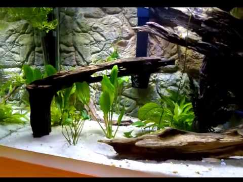 Wall Aquarium With 3D Background - Thin Rock Design From Aqua