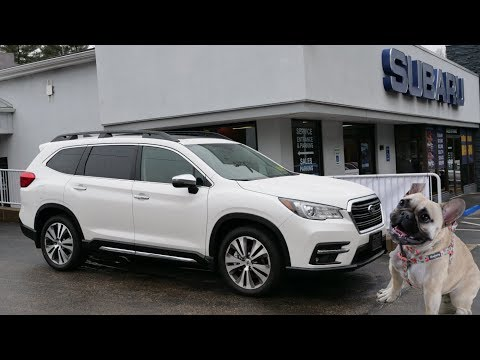 2019 Subaru Ascent Touring-Quick Look (Frenchie Approved!)