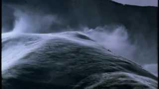 Cry The Spirit - Cat - David Antony Clark