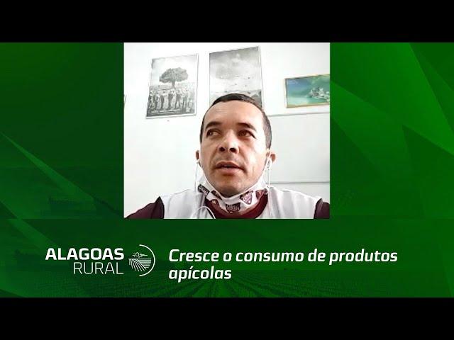 Campo Empreendedor: cresce o consumo de produtos apícolas