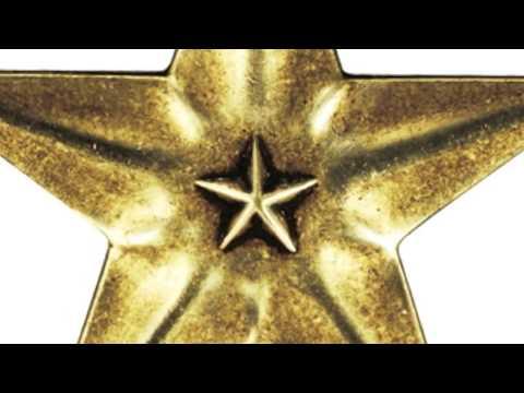 The Bronze Star Medal - BSM