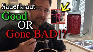 Testing Sauerkraut is it Bad or Safe to Eat?