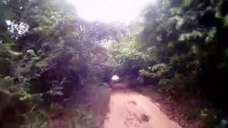 Trilha de buggy na mata, em Tambaba