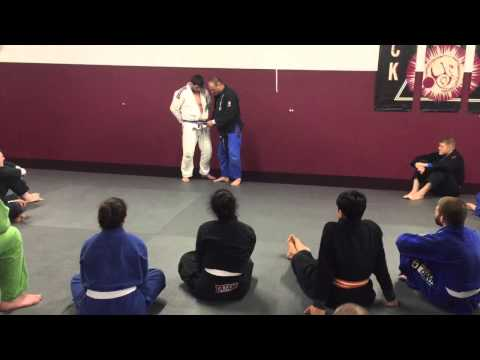 WHAT DOES A PURPLE BELT LEVEL PROMOTION MEAN?