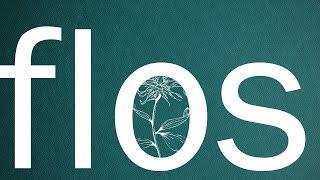 flos/R(self-cover)