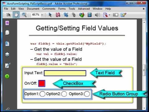 PDF Form Field Scripting Basics