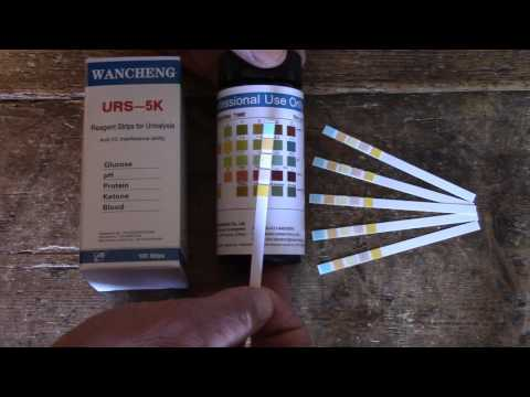 How to test for Glucose (Diabetes) using urine testing strips. Interpreting positive glucose results