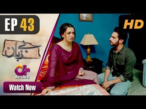 pakistani-drama- -bezuban---episode-43- -aplus-dramas- -usama-khan,-nawal-saeed,-junaid,-mahlaqa