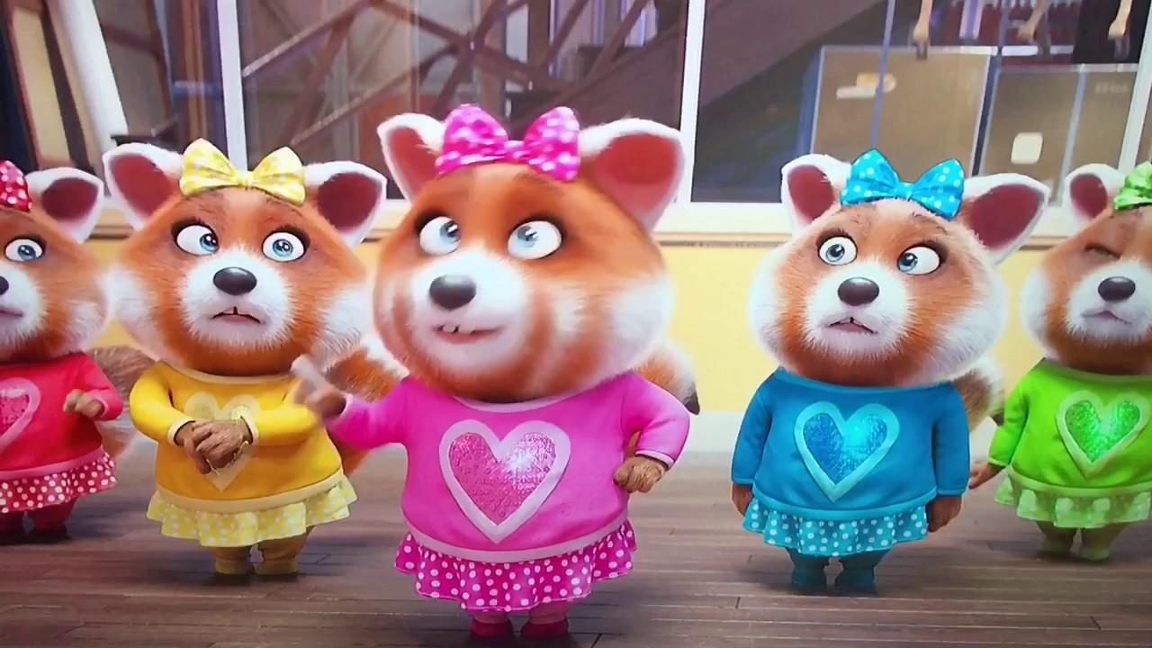 Cute little Japanese singing Red Panda YouTube