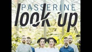 PASSERINE - Look Up (Official)