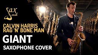 Calvin Harris, Rag'n'Bone Man - Giant - Saxophone Cover Video
