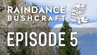 Episode 5: The one about the ponderosa pine
