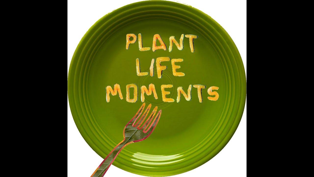 Plant Life Moments: S1E8