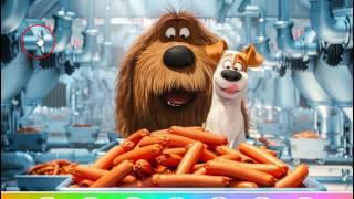 Мультик игра Тайная жизнь домашних животных: Найди объекты (The Secret Life of Pets Find Objects)