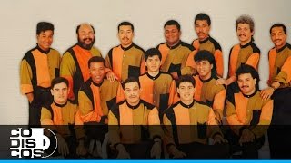 Grupo Niche - No Me Faltó Nada De Tí (Llegando Al 100% | 1991)