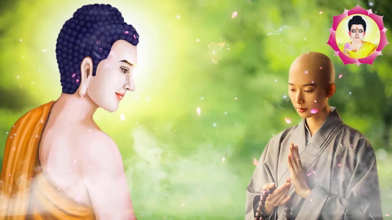 ❤Nghe Phật Dạy Mỗi Đêm Nhẹ Lòng Ngủ Ngon Tiêu Tan Phiền Muộn Khổ Đau ❤