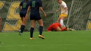 Towson Women's Soccer Defeats UNCW 1-0 on Senior Day