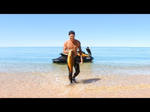 YBS Lifestyle Ep 14 - SPEARFISHING FROM A JETSKI | Coral Trout Catch And Cook