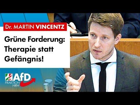 Grüne fordern, Therapie statt Gefängnis! – Dr. Martin Vincentz (AfD)
