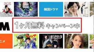 DVDレンタル+動画見放題 http://www.dmm.com/rental/svod/ モリモリモリ...