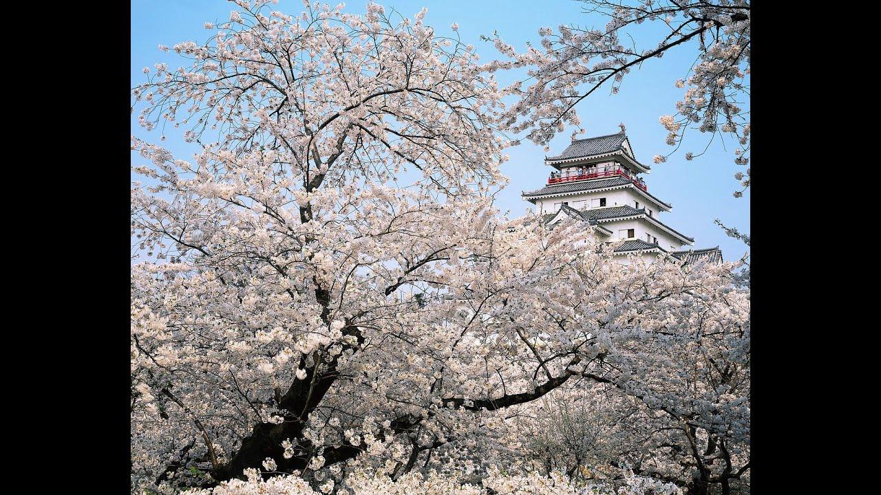 島津亜矢「武田節」Takeda_Bushiposted by embamsfofp1