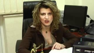 Адвокат Светлана Гринфильд Трудовое право часть 1