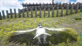 most well defended base in ark official servers