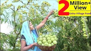 ताजे आंवले का रसीला मुरब्बा बनाये ऐसा की एक एक करके सारे खा जायेंगेInstant Aamla Pickle Amla MURABBA