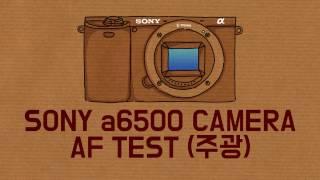 Sony a6500 AF TEST (주광)