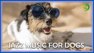 Jazz Music For DOGS! Relaxing Dog Music to Calm Anxiety