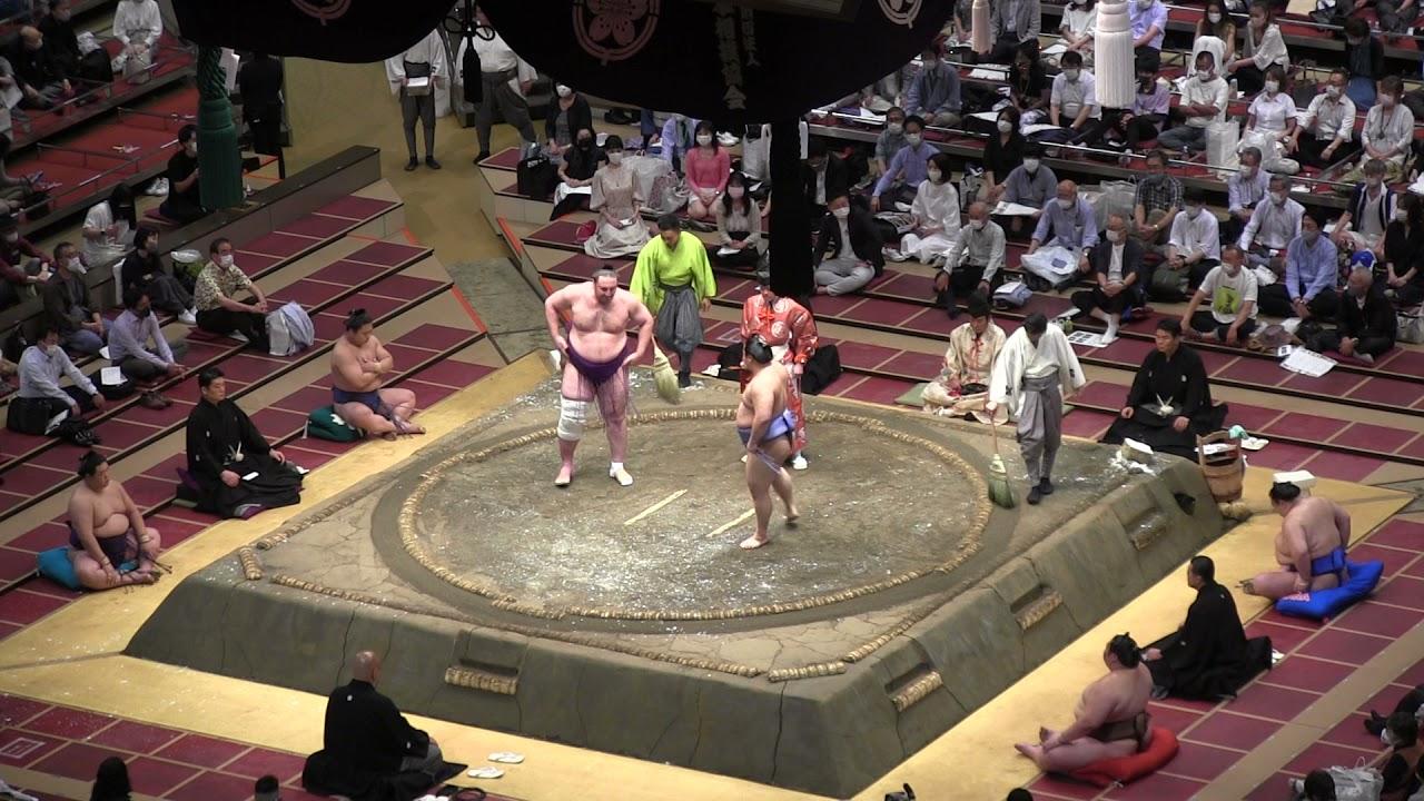 翔猿🐵栃ノ心 #五月場所 #大相撲 #sumo #JAPAN