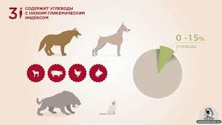 Корма для кошек и собак • Acana и Orijen (Канада) • Зоомагазин Zverushka.org.ua
