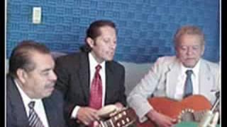 Trio Los Jaibos - hoja seca -