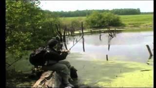 Ловля щуки