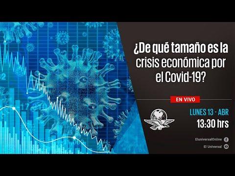 ¿De Qué Tamaño Es La Crisis Económica Por El Covid-19?
