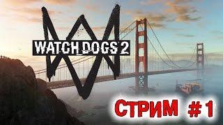 Прохождение Watch Dogs 2 #1 [стрим]