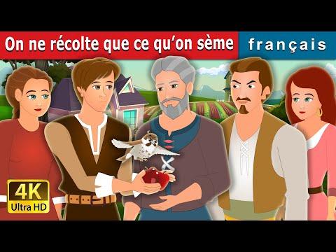 On Ne Récolte Que Ce Qu'On Sème | What We Plant We Eat Story | Contes De Fées Français