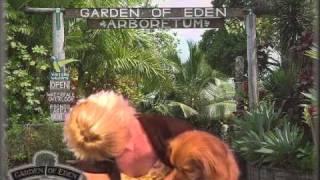 Dog Boarding Utah, SLC Dog Sitting, Affordable Pet Boarder,
