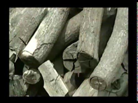 การสร้างเตาเผาถ่านจากถัง 200 ลิตร แบบตั้งและแบบนอน