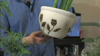 How To Care For House Plants : Picking House Plant Pots