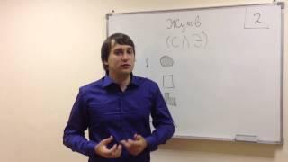 12 урок - Жуков (СЛЭ)