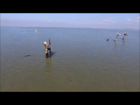 SS Richard Montgomery by drone