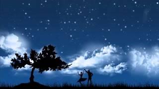 คืนที่ดาวเต็มฟ้า - ปราโมทย์ วิเลปะนะ