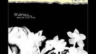 Hope Sandoval - Feeling of Gaze