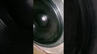Test Fx20 subwoofer excursion part 2