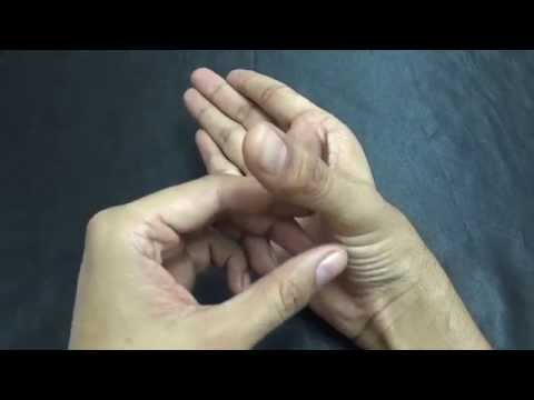 1st CARPO-METACARPAL JOINT : MOVEMENTS