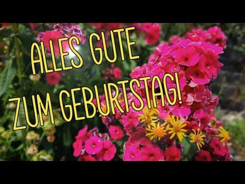 geburtstagswünsche-video-mit-schönem-geburtstagslied-und-geburtstagsgrüßen-alles-gute-zum-geburtstag