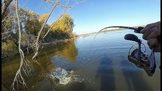 СААНЧЕЕЕС!!!! ЭТО ПЯТНАШКА !!!! ДАВАЙ ПОДСАК!!!!Трофейная рыбалка осенью!!!